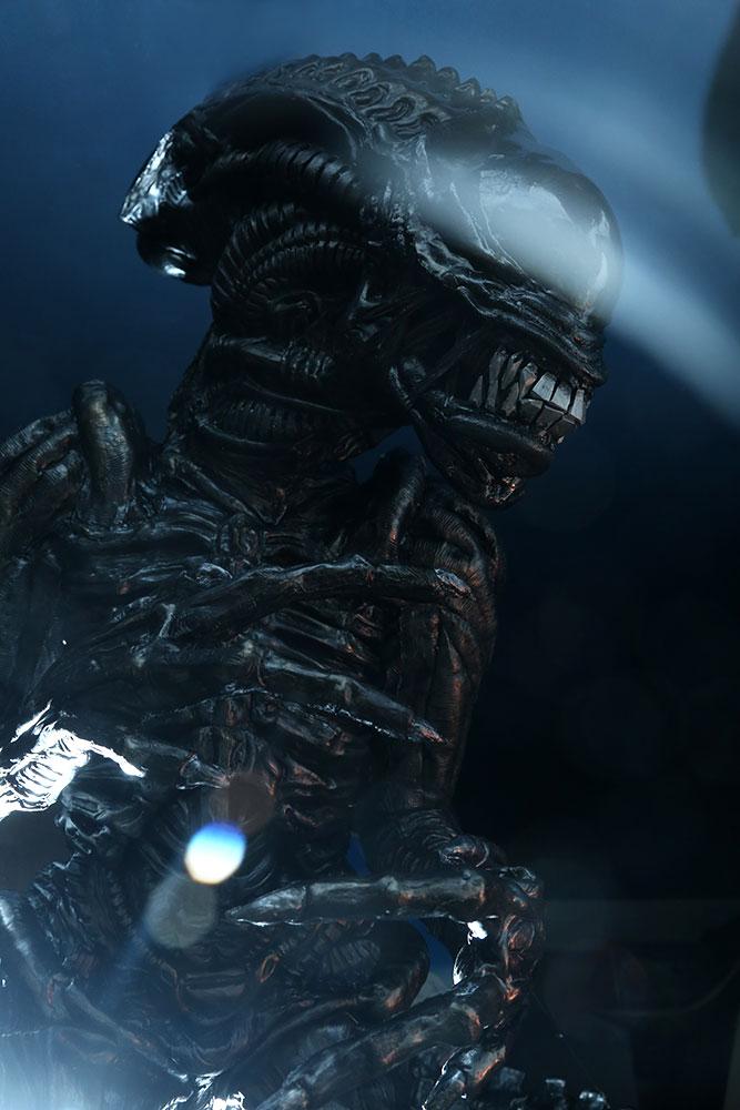 Alien Costume 5